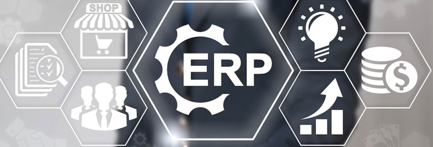 Système ERP Microsoft Dynamics